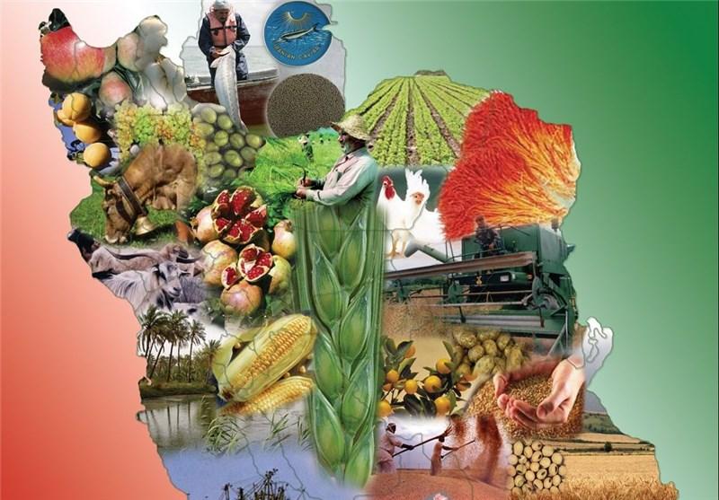 پیش بینی آینده صنایع غذایی پس از برجام