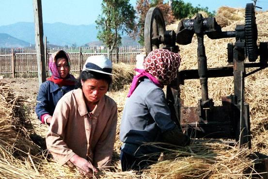 چگونه اقتصاد کره شمالی به بدترین اقتصاد جهان تبدیل شد؟
