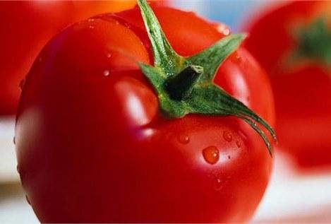 ثبات قیمت رب گوجهفرنگی